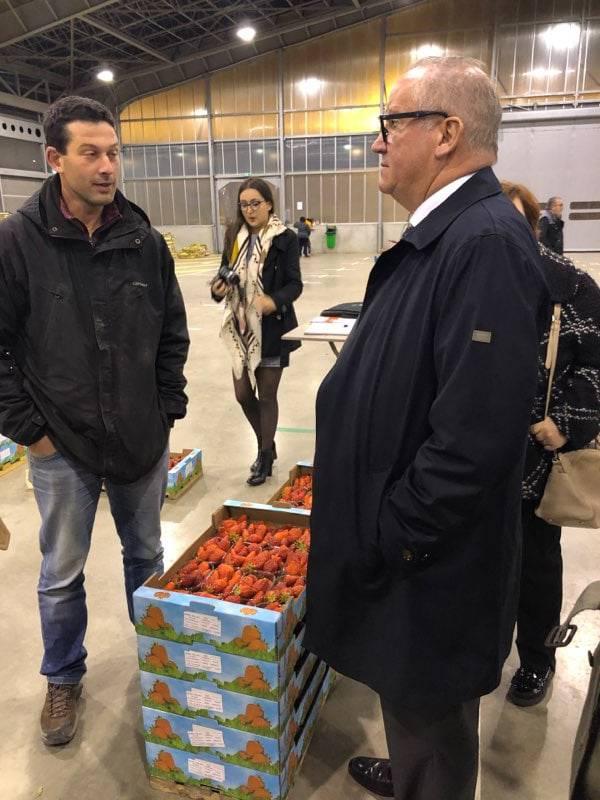 Dégustation des premières fraises du Tarn et Garonne